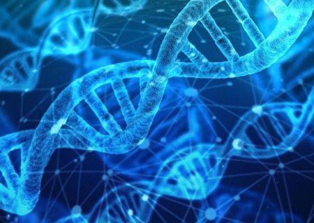 شناسایی ۵ ژن اصلی مرتبط با نوع شدید کووید-۱۹؛ محققان داروهای هدف را پیشنهاد دادند