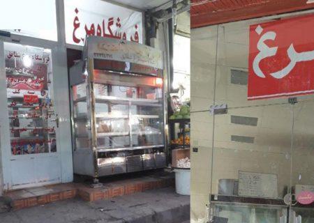 بازار آشفته مرغ در فارس
