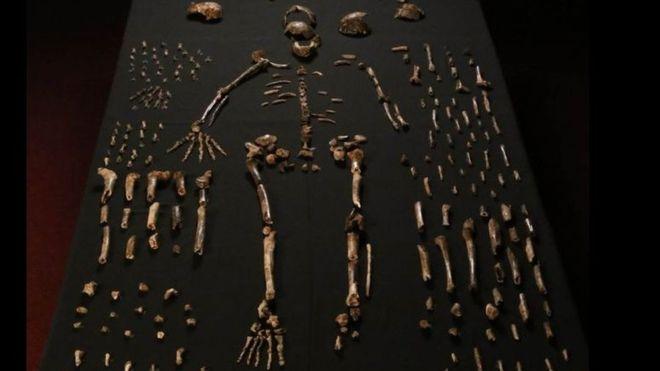 کشفی حیرتانگیز در مهد انسان: دفن مردهها مخصوص انسان امروزی نیست