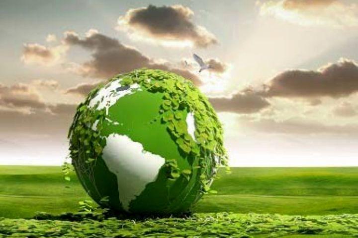 هفته محیط زیست در فارس مجازی برگزار میشود