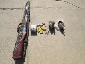 بازداشت «شکارچی غیرمجاز» در جهرم