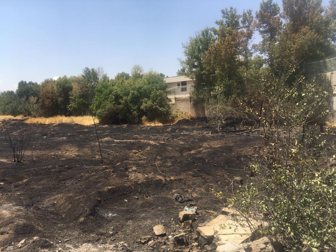 آتشسوزی در یکی از باغهای شیراز