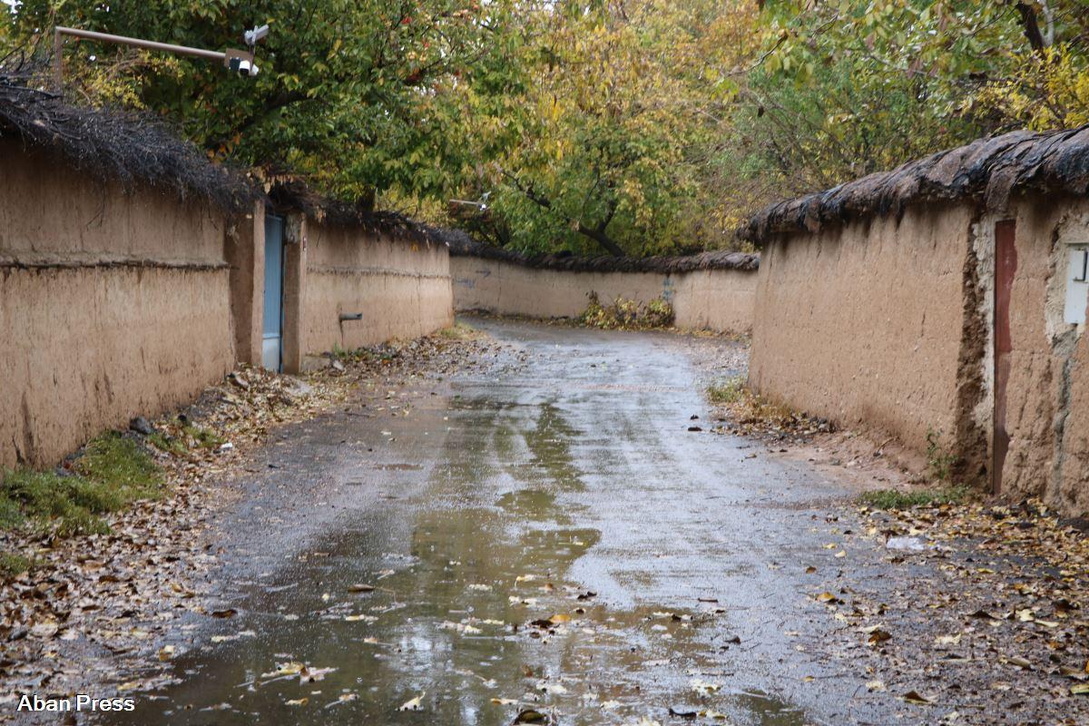 آلبوم عکس؛ آذر بارانی شیراز