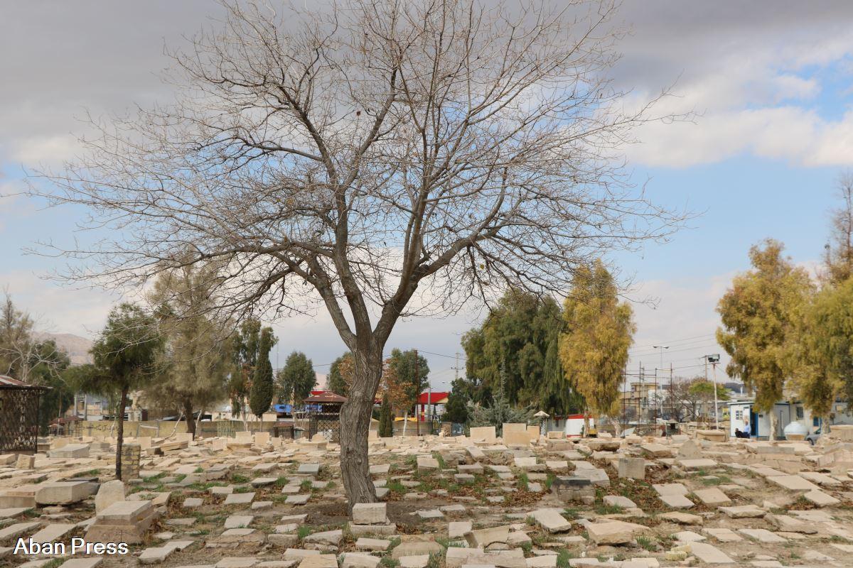 درخواست برای توقف «ساماندهی تخریبگرانه» گورستان تاریخی «درب سلم» شیراز