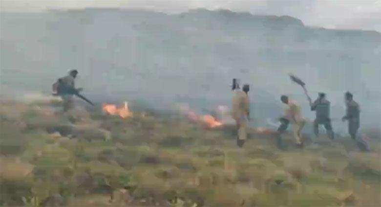 مهار آتش سوزی پارک ملی بمو