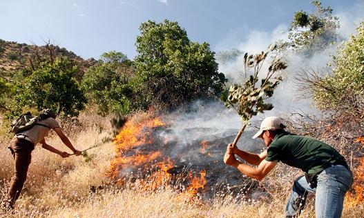 آتشسوزی در ارتفاعات ممسنی همچنان ادامه دارد