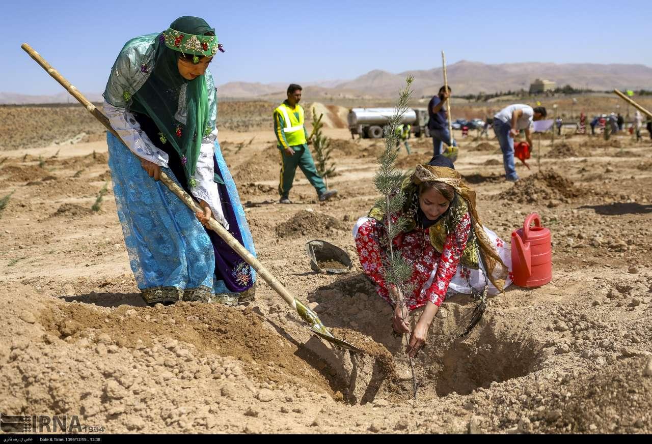 آلبوم عکس؛ آیین درختکاری در شیراز
