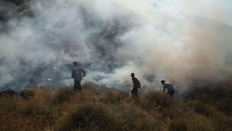 ۱۳۰ هکتار از منابع طبیعی داراب فارس قربانی آتش سوزی شد