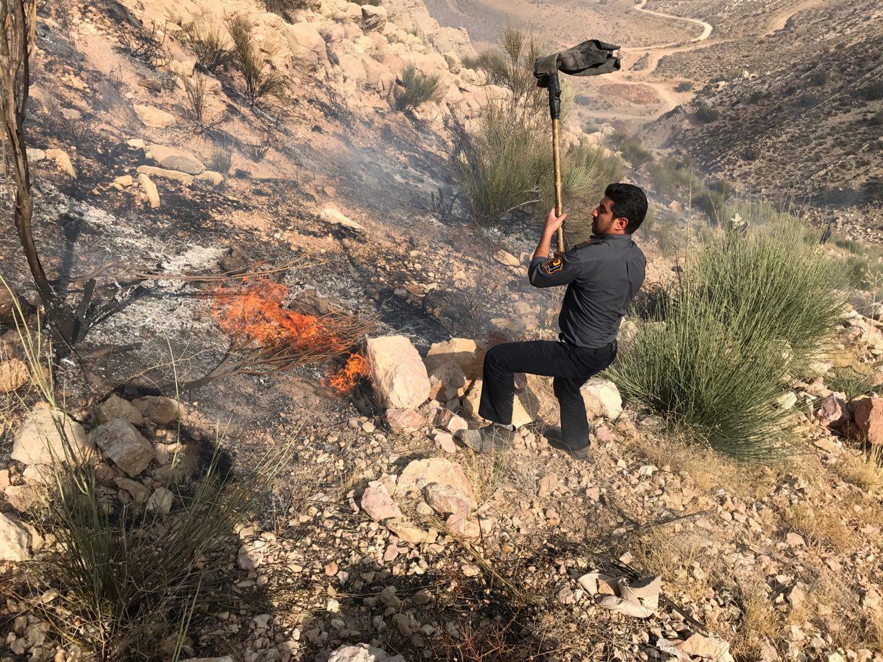 تردید در خصوص «کاهش ۲۰۰ درصدی» آتش سوزی منابع طبیعی فارس