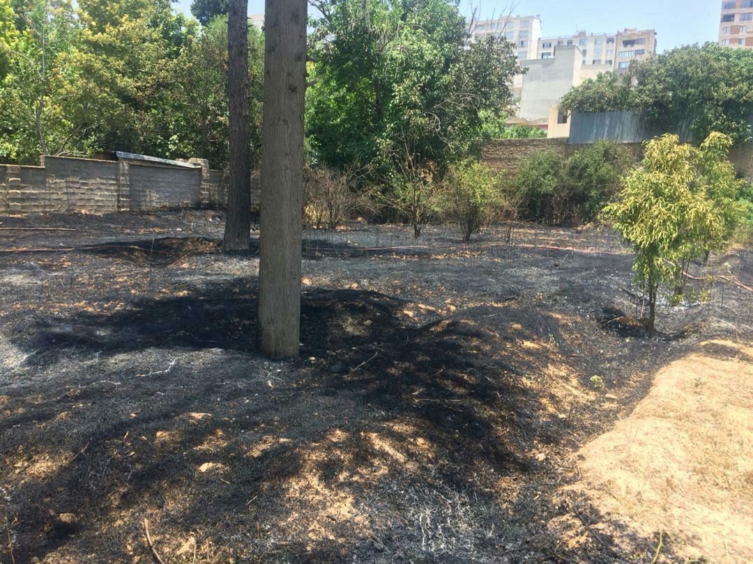 سومین آتش سوزی یک باغ در شیراز