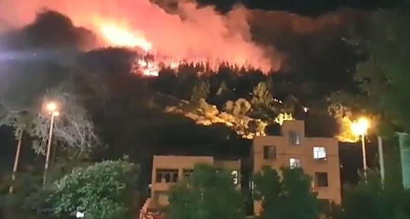 آتش سوزی در بوستان شهرک سعدی شیراز