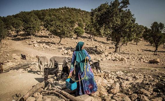 تداوم خشکسالی روستاها را از سکنه خالی میکند
